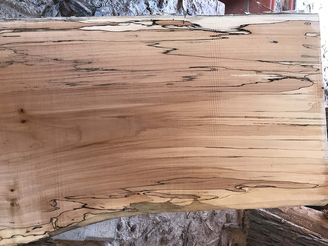 Spalted maple slabs for sale wood